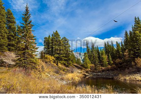 The valley of Kananaskis mountain park. Bright autumn day in Indian summer. Shallow river with yellow autumn leaves. The Canadian Rockies. The concept of active, ecological and photo tourism