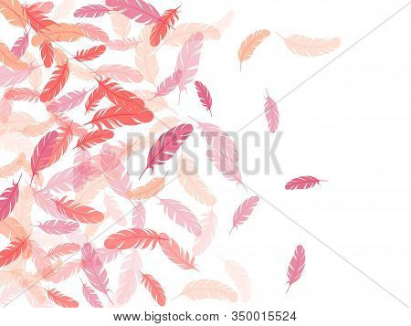 Simple Pink Flamingo Feathers Vector Background. Plumage Trendy Fashion Shower Decor. Detailed Majes