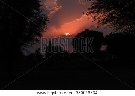Silhouette Image Of Green Forest Tree And Purple Clouds, Black Clouds, And Red Clouds In The Sky On