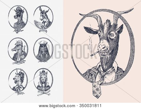 Animal Characters Set. Smoking Goat Llama Skier Deer Lady Walrus Crocodile Dog Donkey Alpaca. Hand D