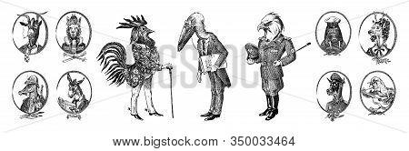 Animal Characters Set. Bald Eagle Rooster Stork Walrus Crocodile Goat Dog Donkey Alpaca Llama Deer.