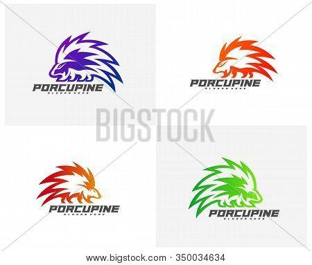 Set Of Modern Porcupine Logo Vector, Icon Symbol