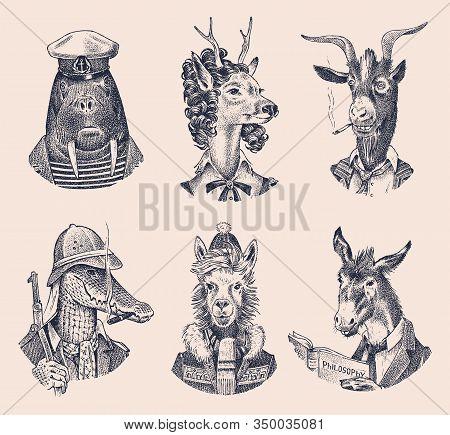 Animal Characters Set. Deer Lady Walrus Crocodile Smoking Goat Dog Donkey Alpaca Llama Skier. Hand D
