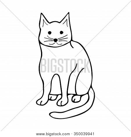 Doodle Cat Sits And Stares, Black And White Illustration On White Background. Cute Animal