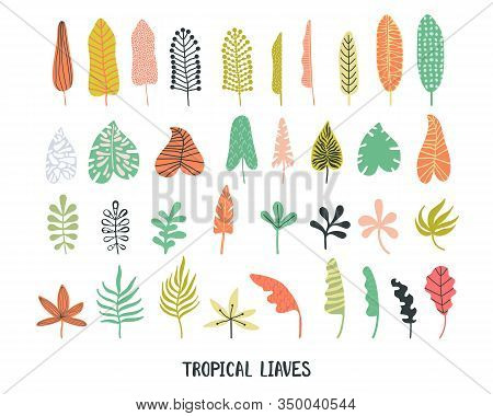 Set Tropical Leaves Hand Drawn Flat Illustrations. Exotic Plants Sketch Cliparts Collection. Bright