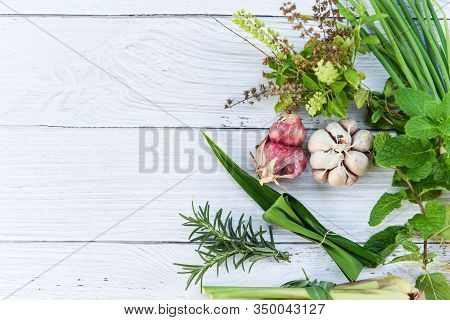 Kitchen Herb Garden Concept / Natural Fresh Herbs And Spice On Rustic Wood Background In The Kitchen