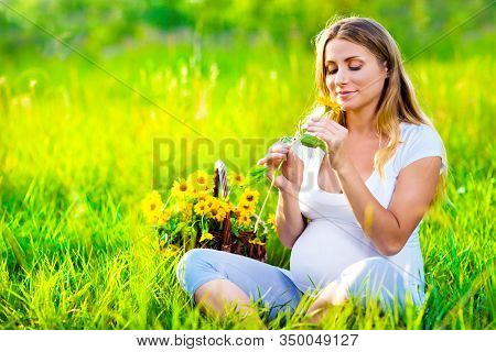 Pregnant Woman Sitting On Green Field With Basket Of Yellow Flowers And Looking At Flower In Her Han