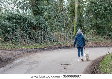 Dog Walker Alone On Quiet Country Lane. Walking On The Road. Single Female In Winter Coat With Dog O