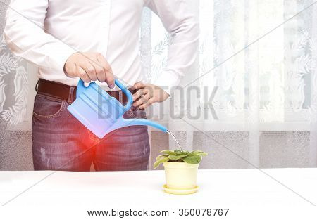A Male Office Worker Is Watering A Flower From A Watering Can In The Office, A Red Spot In The Groin