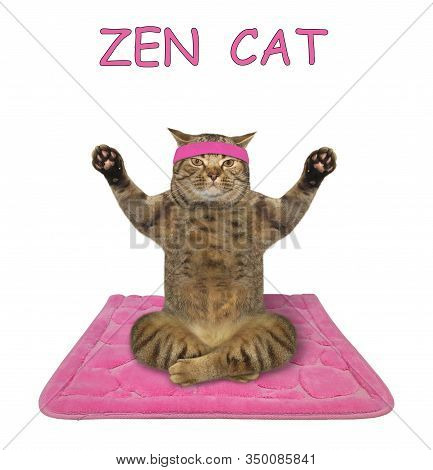 The Beige Cat Athlete In A Sport Headband Is Doing Yoga Exercises On A Pink Fitness Mat. White Backg