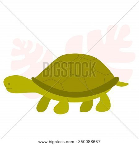 Little Cute Turtoise. Animal With Carapace. Adorable Small Green Turtle.
