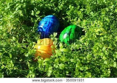 Three Eastereggs In The Cress In The Eastertime