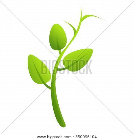 Peas Plant Icon. Cartoon Of Peas Plant Vector Icon For Web Design Isolated On White Background