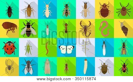 Bug Of Insect Vector Flat Set Icon.vector Illustration Insect Beetle. Isolated Flat Icon Bug And Fly