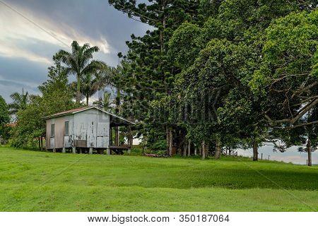 An Old Historic Hut Set Amongst Norfolk Pines In Green Parkland