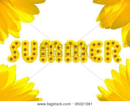 Summer Text Made With Sunflowers