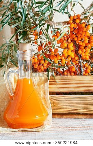 Vegetarian Food, Healthy Nutrition, Preserving The Harvest Of Ripe Juicy Sea Buckthorn, Preparing Fr