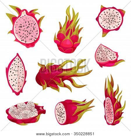 Whole And Halved Pitaya Or Dragon Fruit Covered With Leathery Leafy Skin Vector Set