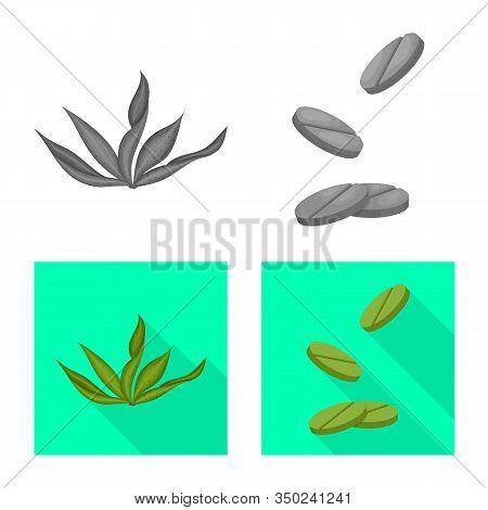 Vector Design Of Protein And Sea Icon. Set Of Protein And Natural Vector Icon For Stock.