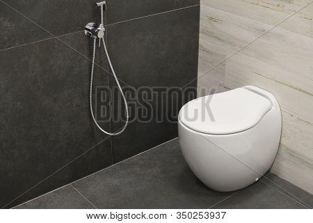 Modern Home Bathroom Interior Design With White, Toilet Or Bidet With Chrome Shower Head. Luxury Whi