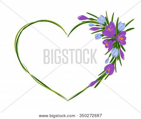 Beautiful Heart Frame With Bouquet Of Crocuses. Vector Illustration. Spring Frame Of Violet And Blue