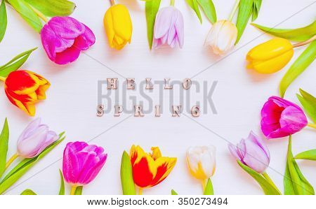 Spring background. Lovely spring tulip flowers on wooden backdrop with inscription Hello Spring, spring holiday postcard. Spring flower background with spring tulip flowers