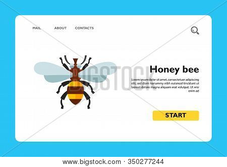 Icon Of Honey Bee. Pollination, Insect, Apiary. Bee Garden Concept. Can Be Used For Topics Like Biol
