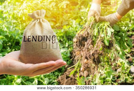 Money Bag With The Word Lending On The Background Of Potato Harvesting. The Concept Of Agricultural
