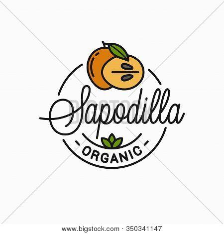 Sapodilla Fruit Logo. Round Linear Of Slice