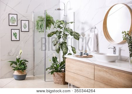 Green Plants In Elegant Modern Bathroom. Interior Design