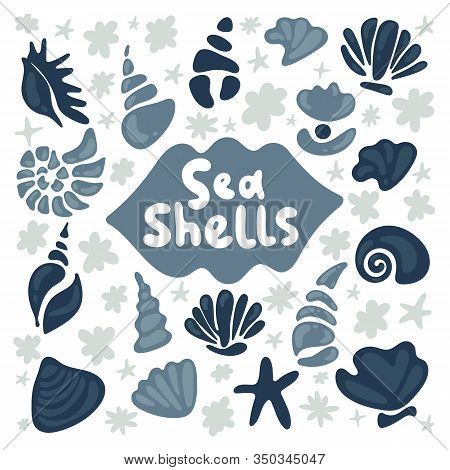 Shell Collection - Vector Cartoon Silhouette Illustration. Set Of Various Blue And Grey Sea Shells A