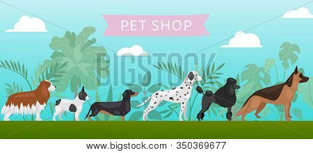Pet Shop Banner With Different Breeds Dogs, Petshop Service Vector Illustration. Food For Big Size D