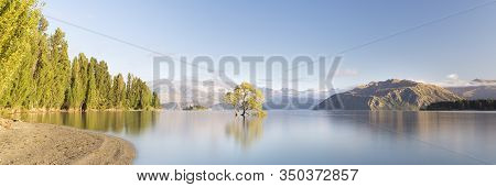 That Wanaka Tree New Zealand. Lone Tree In Lake. Wanaka Tree In Lake Wanaka South Island New Zealand