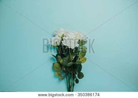 Spring Freshness Card With Copy Space. White Roses With Green Leaves On Blue Background. Bunch Of Be