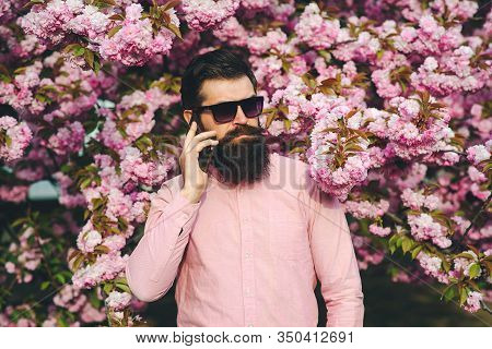 Bearded Serious Man Talking By Mobile Phone. Fashionable Man In Trendy Glasses. Spring Flowers. Spri