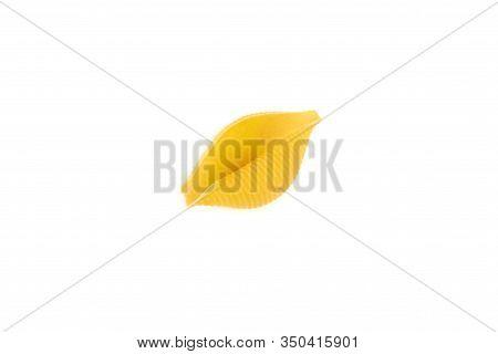 Conchiglioni Pasta Shells , Isolated On A White Background.