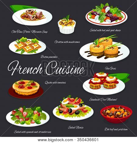 French Food Dishes Of Vector Foie Gras, Cheese, Olives, Vegetables And Tuna Fish Salads, Egg Sandwic
