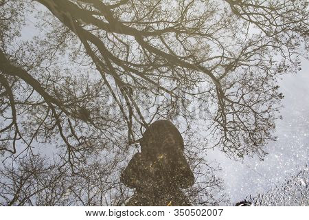 Reflection Of A Girl In A Jacket With A Hood In A Puddle Of Water With Trees On The Background. A Gi