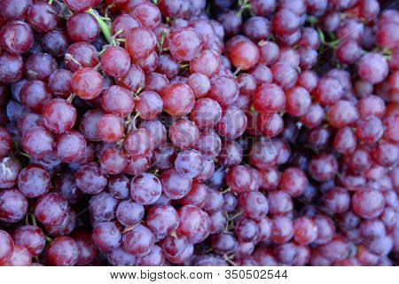 Soft Focus Group Of Fresh Ripe Red Grapes In The Market.red Wine Grapes Background.a Lot Of Ripe Gra