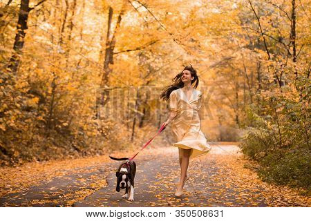 Young Woman With The Dog In The Park. Wind In The Hair. With Dog On A Walk In An Autumn Nature. Youn