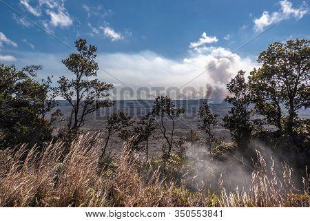 Kilauea Volcano, Hawaii, Usa. - January 9, 2012: Looking Through Bushes To Kalemaumau Crater Produci