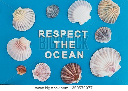 Respect The Ocean Text Surrounded By Colorful Shells On Blue Background