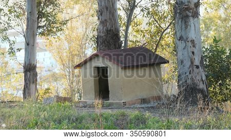 Empty Brick Built Kennel In Eucalyptus Shaded Ground