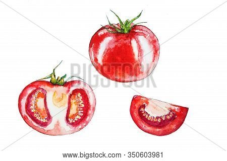 Set Of Red Tomatoes Isolated On White Background. Illustration Of Red Tomatoes. Watercolor Drawing O