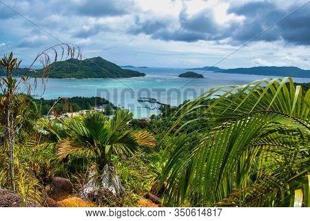 Fond Ferdinand Nature Reserve On Praslin, Seychelles
