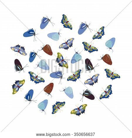 Vector Realistic Butterfly Illustration Set With Tomato Plant, Frog And Butterfly. Beautiful Summer