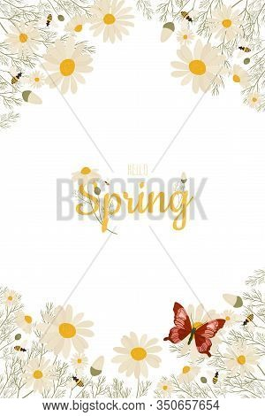 Spring Greeting Card Chamomile Flowers. Vector Layout Decorative Greeting Card Or Invitation Design