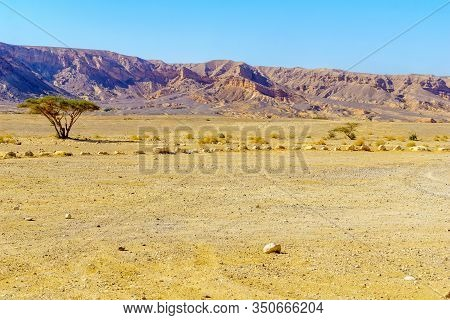 View Of Wadi Paran Nature Reserve, In The Negev Desert, Southern Israel