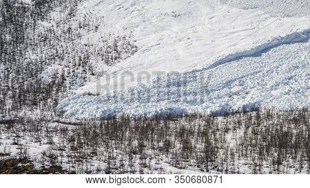 A Large Avalanche In Northern Norway, Close To Tromsø