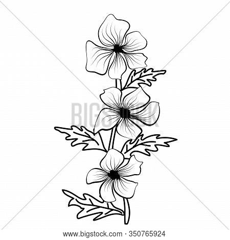 Black Outlines Of Flowers. Flower Icon. Vector Outline Illustration. Floral Illustration. Flower Bac